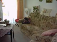 Liebevoll eingerichtete 2-Raum- Wohnung am Walkmüllerweg
